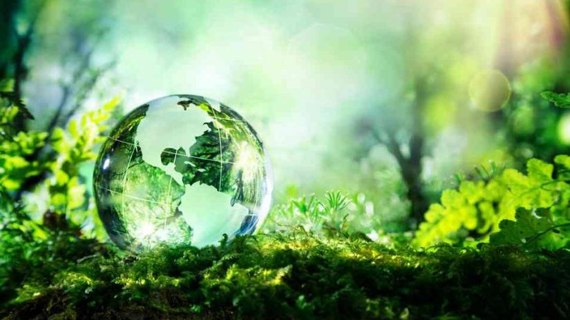 cropped-ecologie-solutions-825x510.jpg