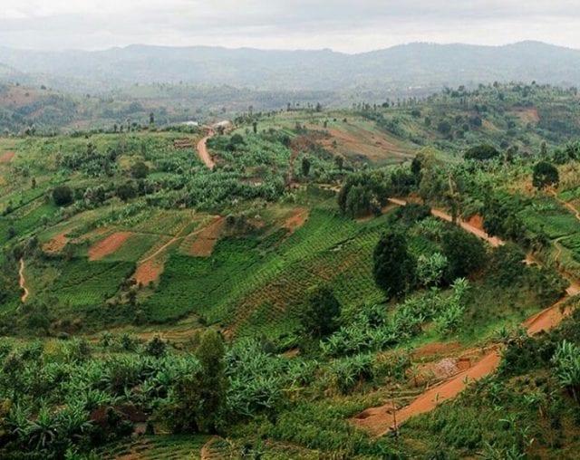 Burundi : droit à la propriété foncière, un casse-tête pour les femmes.