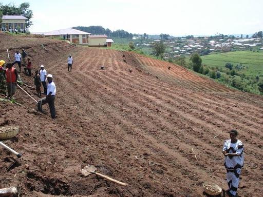Burundi : comment rendre disponible  les engrais chimiques  en temps opportun ?