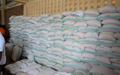 Riziculture à Ngozi : et si la compétition primait sur le monopole?