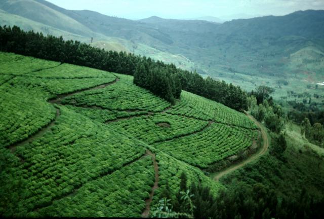 «Consommer local»: une autre forme de protectionnisme au Burundi