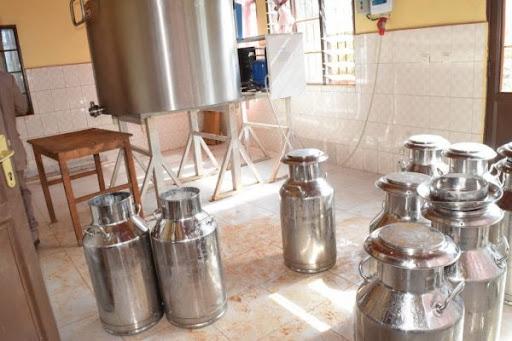 Production laitière à Mukoni : un monopole qui interroge ?